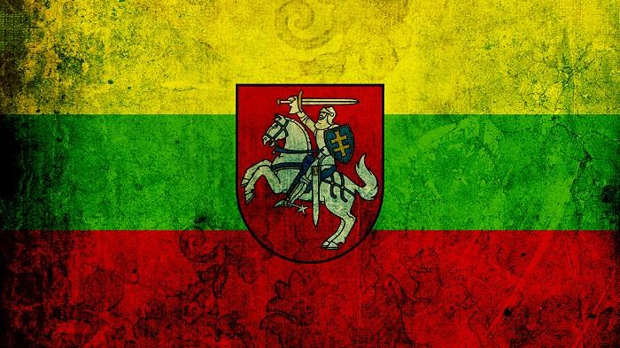 Для чего может понадобиться виза в Литву?