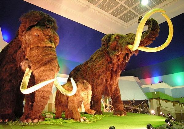 Какие сюрпризы ждут детей в музе «Ледниковый период». Фото с сайта www.homeland-tour.ru