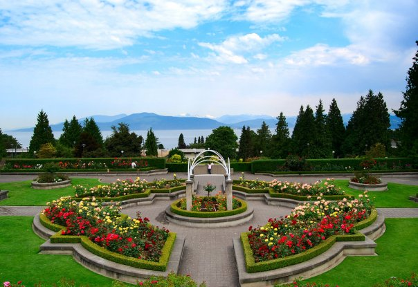 озеленение парков и садов в Ростове