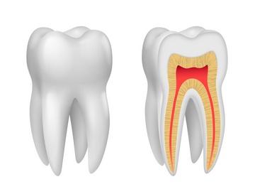 Как удаляют зубной нерв и почему. Фото:  He2 - Fotolia.com