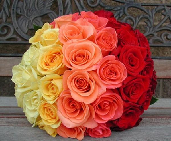 Радужный букет. Фото с сайта darudar.org