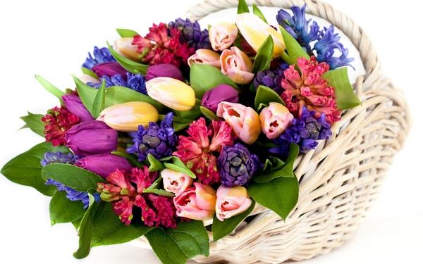 Роскошная корзина цветов — удачная часть подарка. Фото с сайта mykartinka.ru