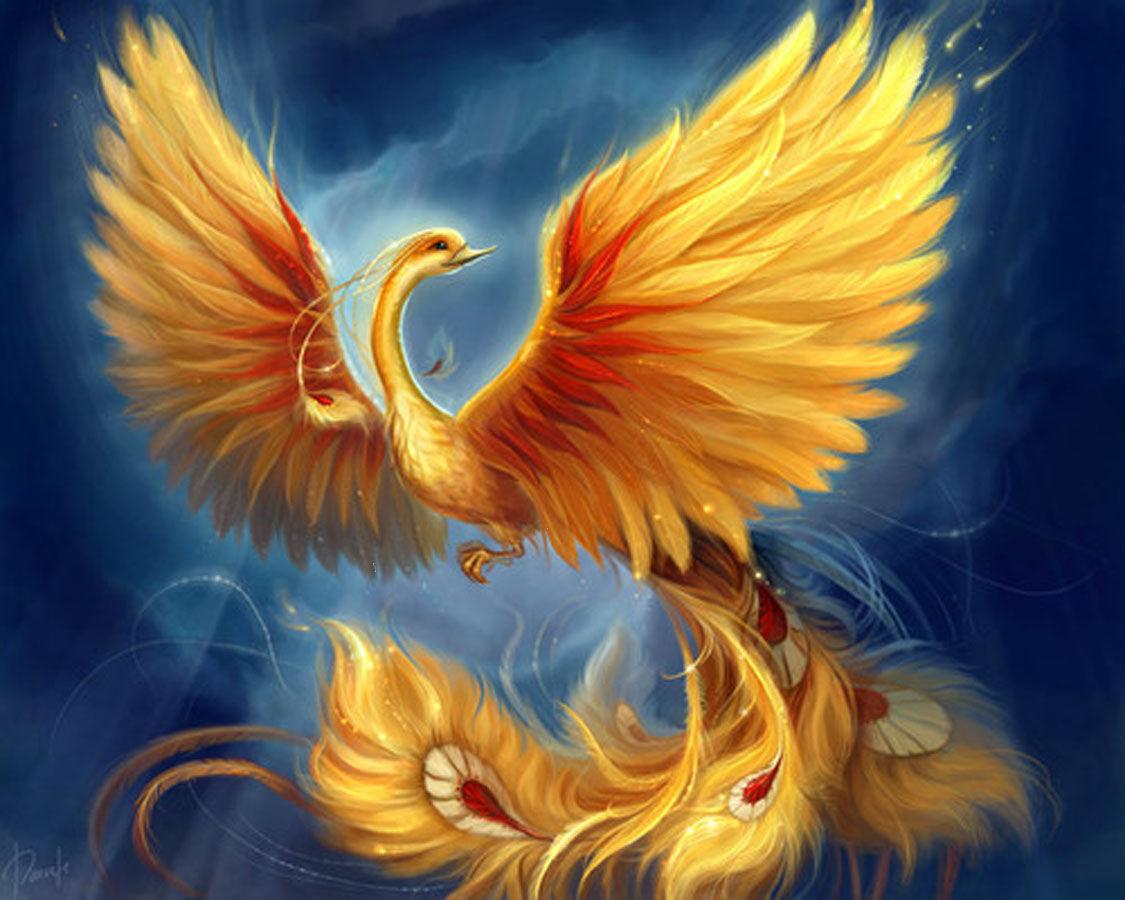 птичка феникс картинки можно смело считать
