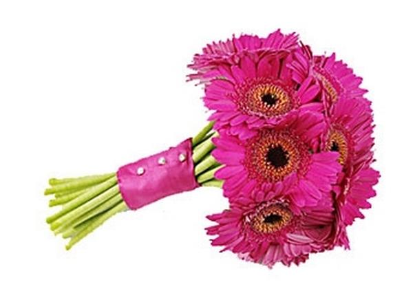 Герберы — приносят счастье и радость. Фото с сайтаflowerore.hj.cx
