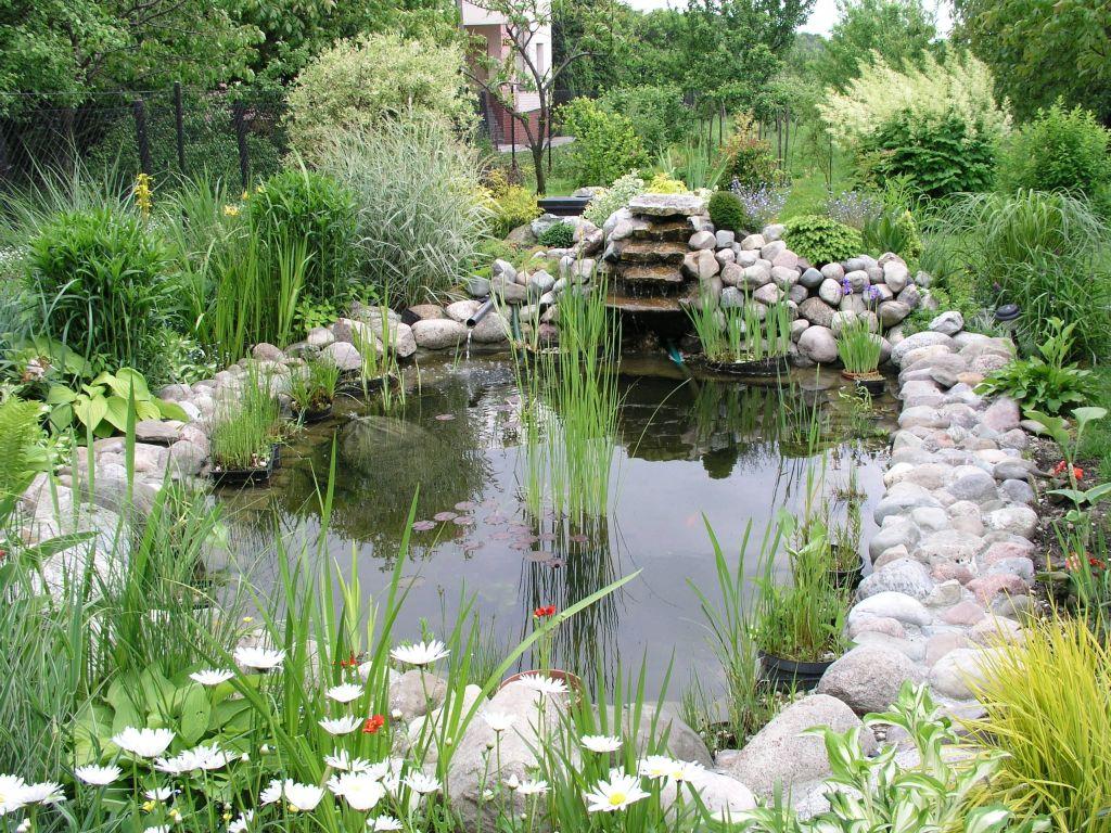 Виды искусственных водоемов