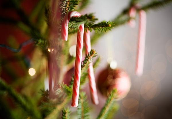 Как оригинально украсить квартиру к Новому году. Фото:  Kati Molin - Fotolia.com